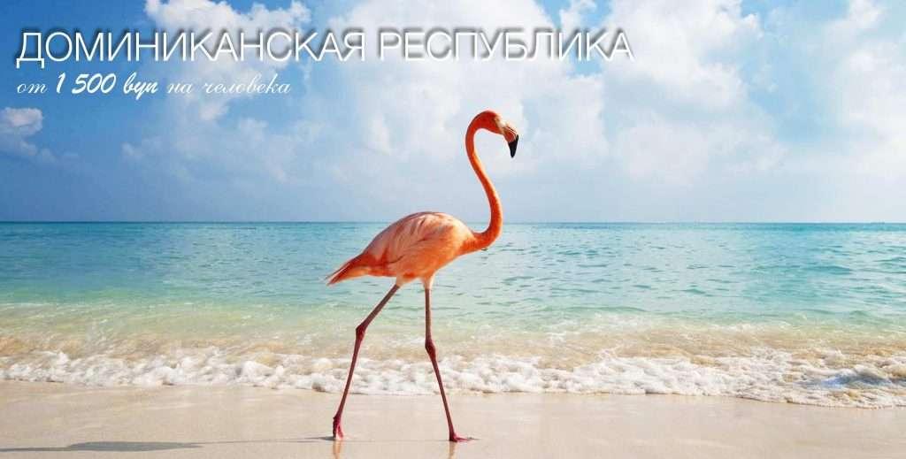 Доминикана из Минска
