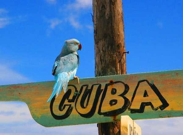 Горящие туры на Кубу, в Варадеро