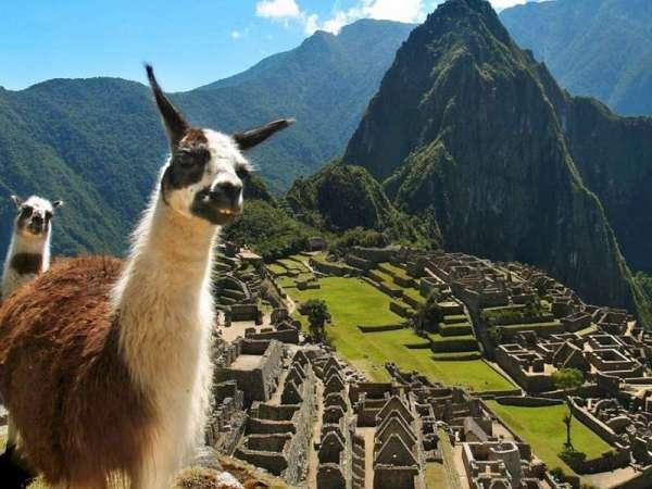 Тур в Перу из Москвы