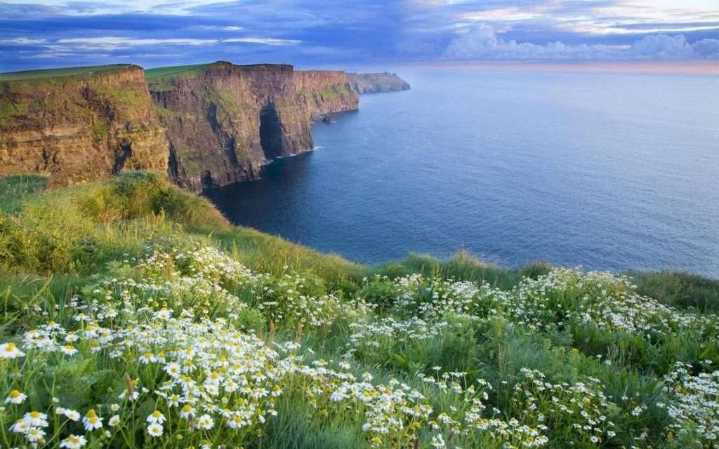 бизнес виза в ирландию для белорусов