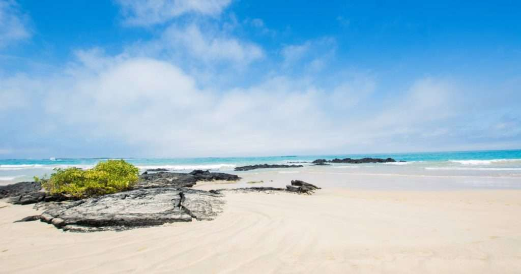 отдых в индии - пляжи и курорты