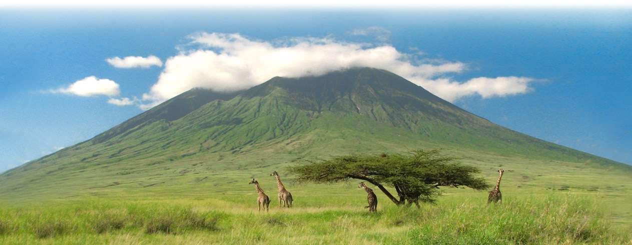 Туры в Танзанию из Минска: цены на отдых с перелетом